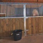 Façades de box pour chevaux